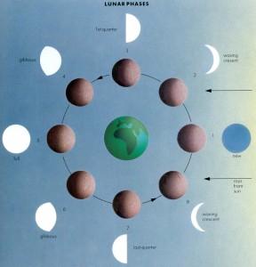Lunar Phases-1